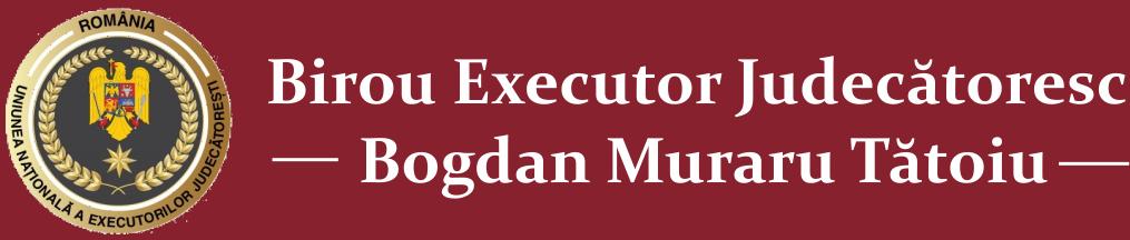 Executor Pitesti Arges